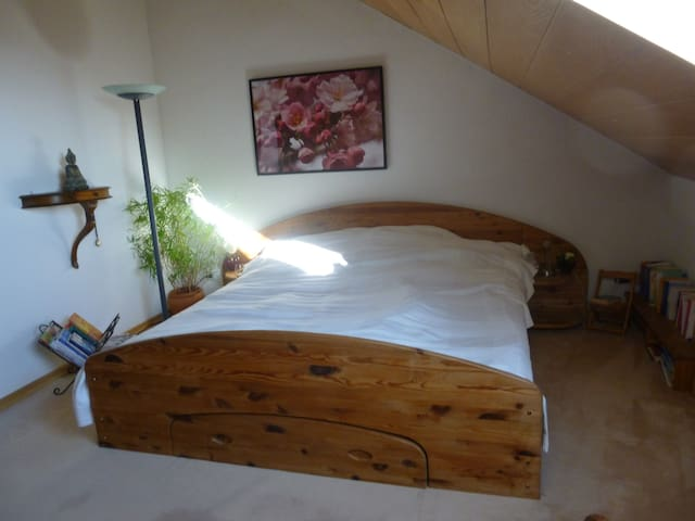 cosy and spacious attic story