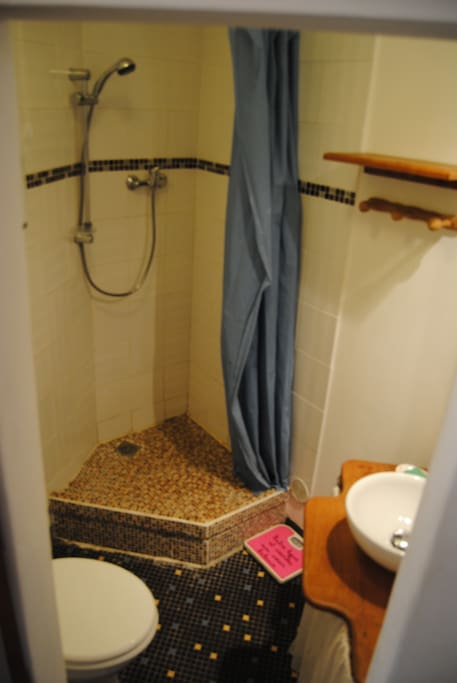 salle de bain shower and toilettes