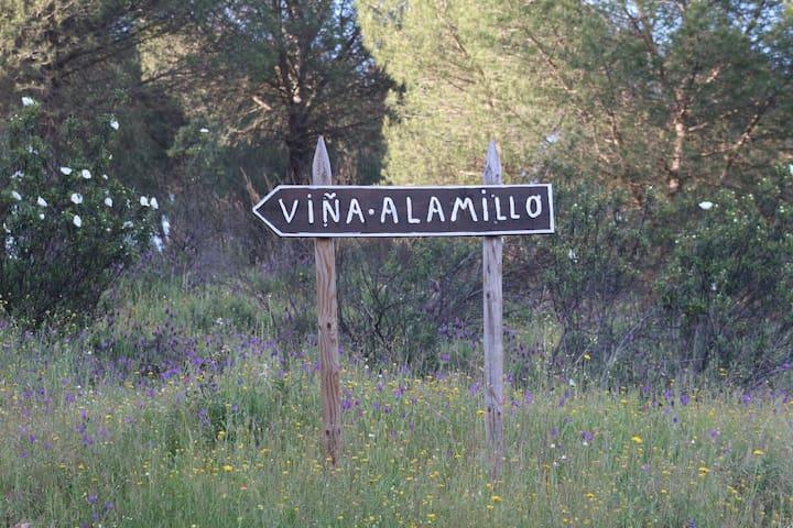 Alojamiento rural El Alamillo