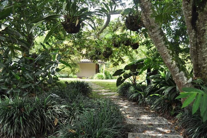 Ambiente tropical!