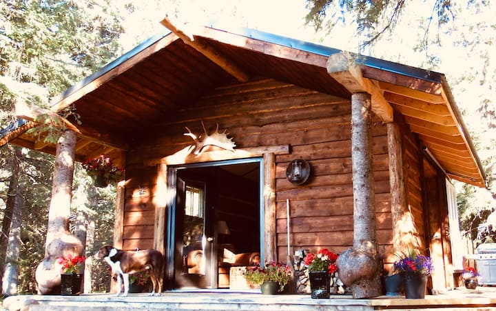 Private Romantic Retreat in our Cozy Rustic Cabin