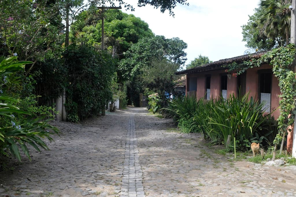 Rua do Bosque 3 .