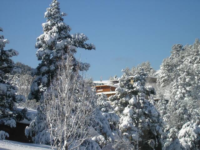 LE PETIT CHALET dans réserve de  biosphère - Beaumont-du-Ventoux - Alpstuga