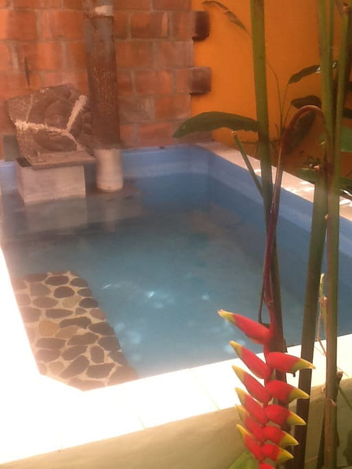 Hot tub enclosure with wood fired snorkel stove, Heliconia in foreground. Excuse the yoga photos...couldn't get the photos to stand up straight!