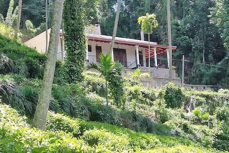 Hantana View Residence, Peradeniya, Kandy.