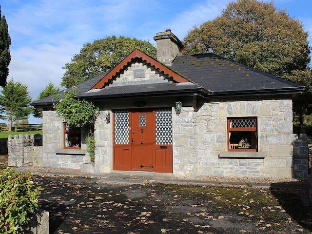 A History Buff's Paradise - Ballynamantan - Huis