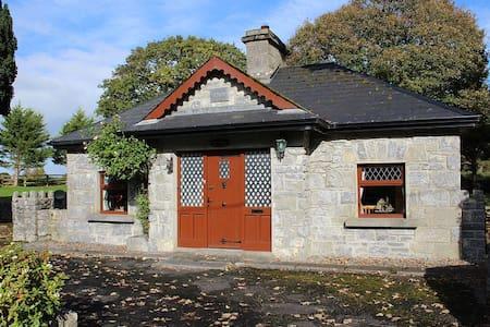 A History Buff's Paradise - Ballynamantan - Haus