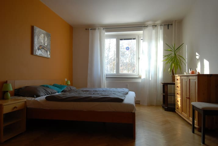 Cozy flat near the city centre in a quiet location - Brno - Appartement