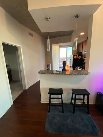 Luxurious Highrise Apartment In Downtown TPA