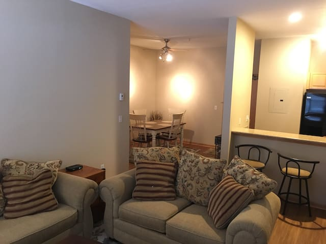 Immaculate 2BR/2BA apartment in Minneapolis