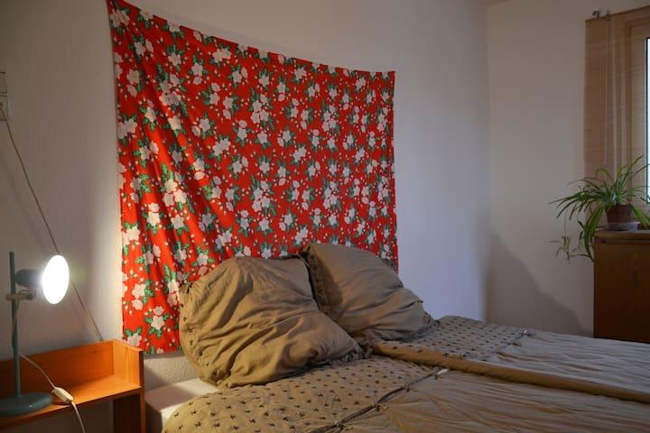 Nice and quiet room in Stuttgart Bad Cannstatt