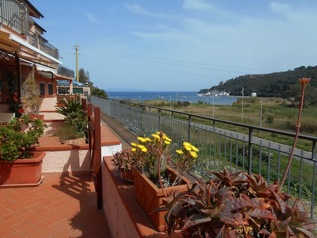 Balcony on the Bay - Porto Azzurro LIvorno - Leilighet