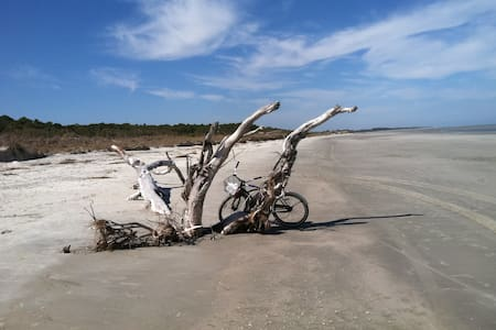 "Sapelo Island ""Mint"" Cottage Birdwatching Paradise"