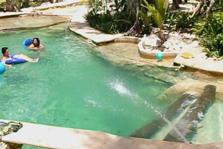 Holidays and ecology : Jungle Tulum