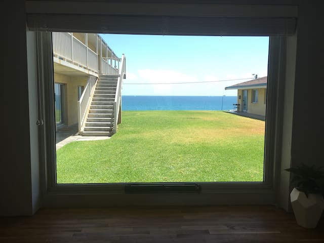 Whole apartment right on the beach! - Watermans Bay - Leilighet