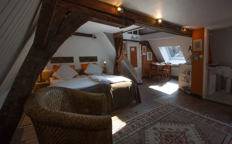 Artist habitat in the center (6pax) - Ghent - Bed & Breakfast
