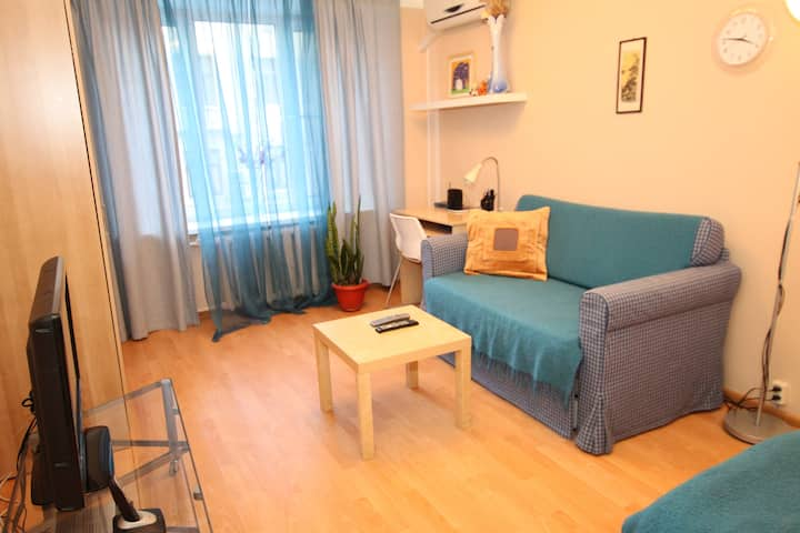Cozy, bright near Garden Ring road