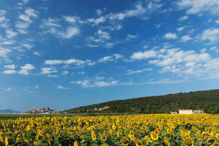 Historic Sea View Villa Santa Francesca, Talamone - Talamone - Hus