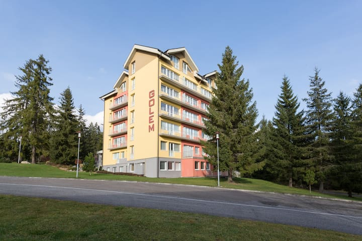 GOLEM Tatranská Štrba - Štrba - Appartement
