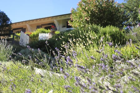 Halte au vert près de Toulouse  (Chambre 1) - Castanet-Tolosan - Bed & Breakfast
