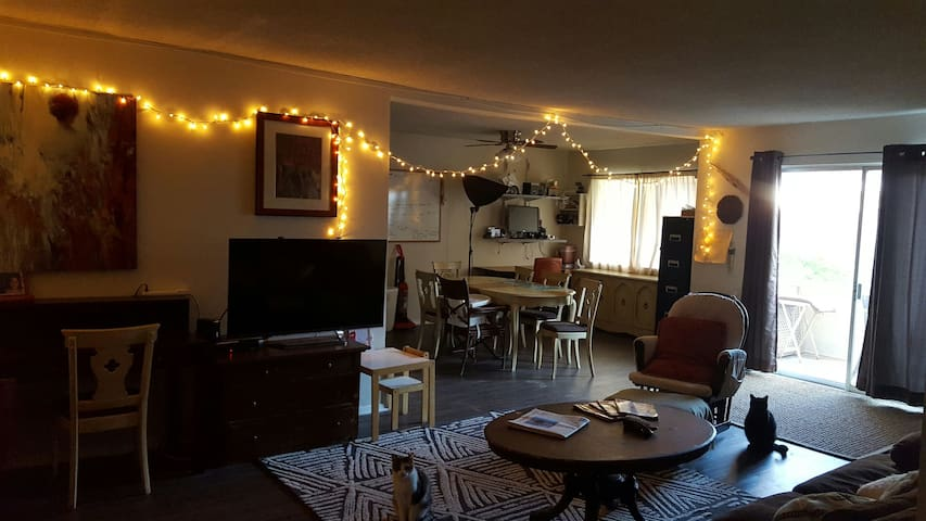 Huge 2 Bedroom! Great for Travelers or Families! - Los Angeles - Appartement