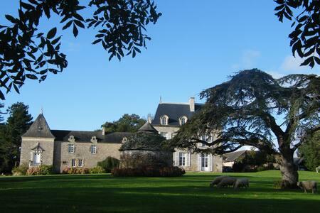 Chambre de charme dans château 1 - Saint-Cast-le-Guildo