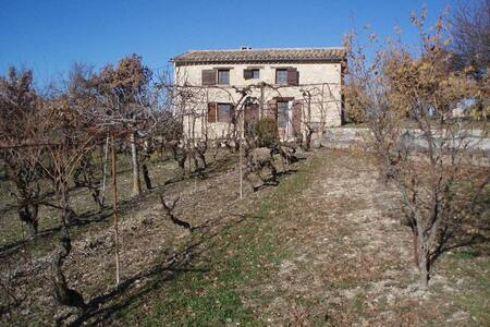 cabanon dans les vignes - Saint-Michel-l'Observatoire