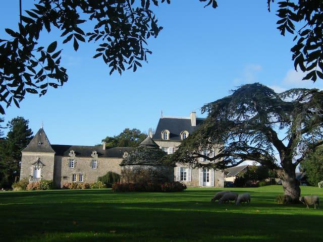 Chambre de Charme dans château 2 - Saint-Cast-le-Guildo - Bed & Breakfast