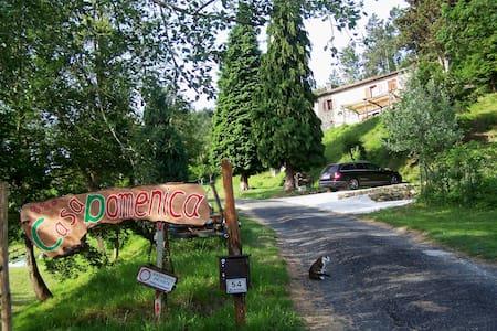 Monastero Bormida: Casa Domenica - Monastero Bormida - Дом