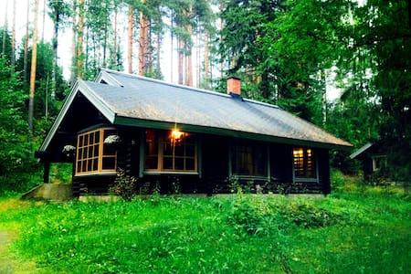 Уютный финский дом у подножия горы - Kerimäki