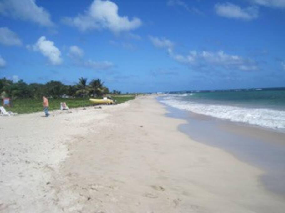 Fabulous Sandy Beach Kite/Windsurf