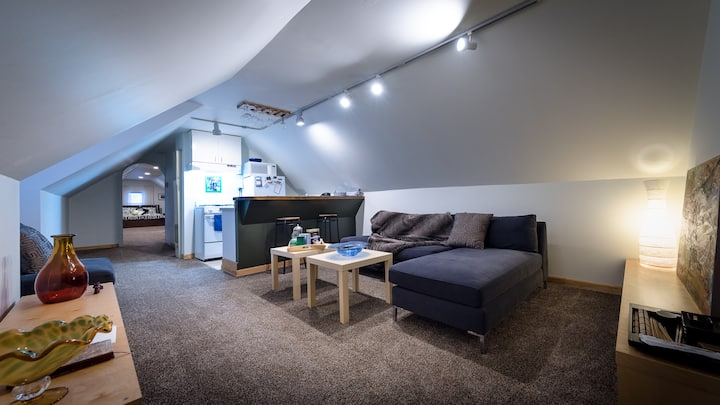 Attic cozy guests suite near South Loop in Chicago