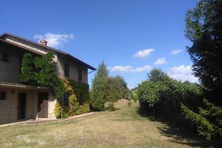 Buena vista - Serravalle Langhe