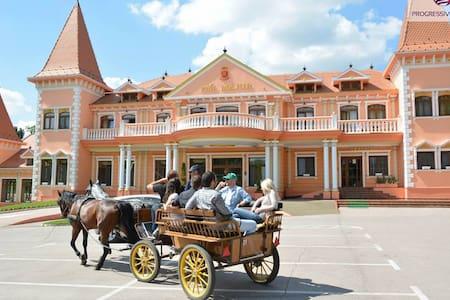 Hotel Villa Majur near horsefarm - Kelebia - Villa
