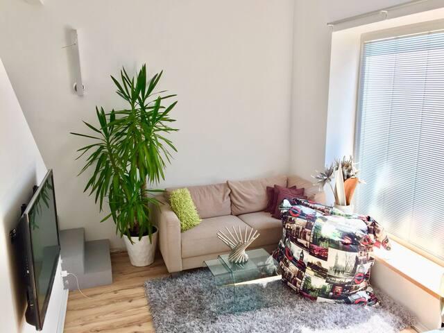 Pokoj / Room Brno