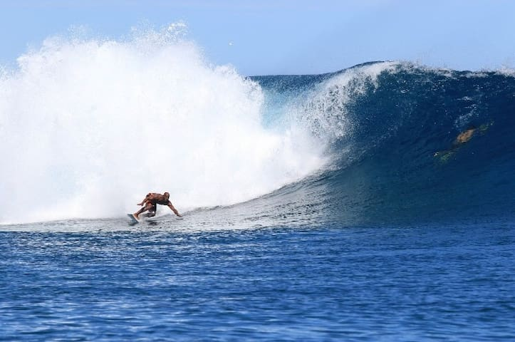 Uciwai Surfers Paradise Fiji