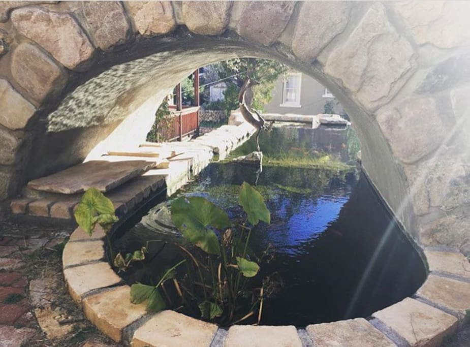 There are many seating areas on the property, perfect for reading or having coffee. This stone seating nook with a view under the bridge/of the koi is what we call The Happy Hour Grotto.