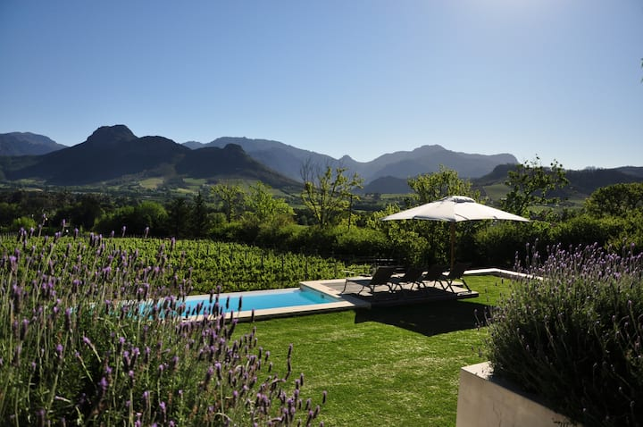 Blueberry Hill Cottages - Lavender - Franschhoek