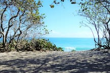 Nearby Jupiter Beach