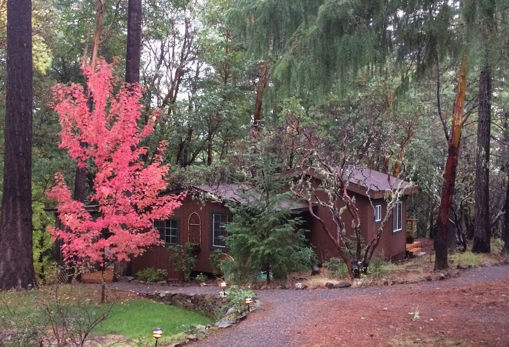 The cabin in fall colors, plus cooler days and nights!