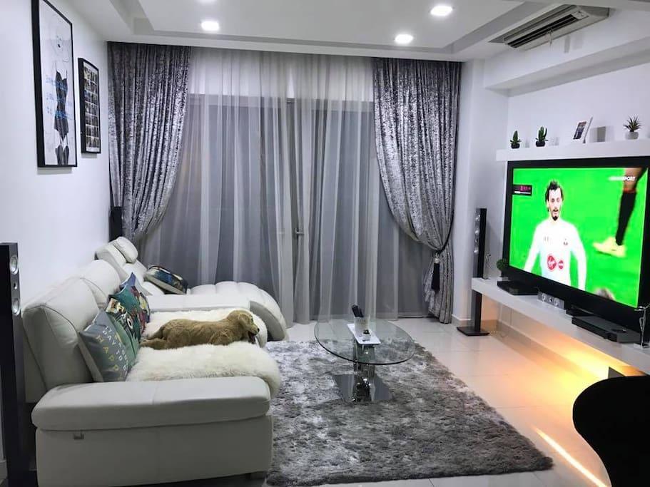 75-Inch Flat Screen, Netflix, Apple TV, Surround Sound System, 300Mbps Wifi, IPTV