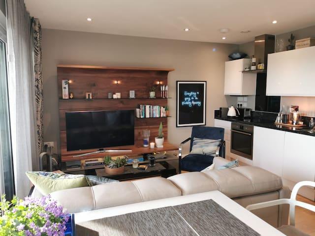 Stunning boutique 1 bed appt near Elstree Studios