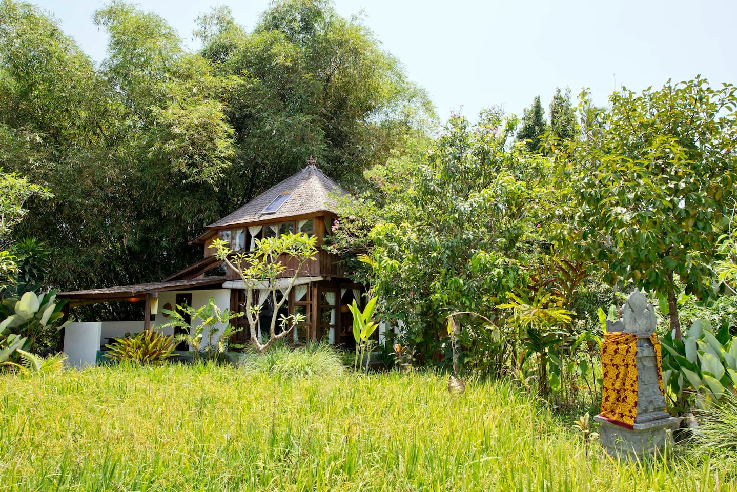 vegetarian wood house and rice fields