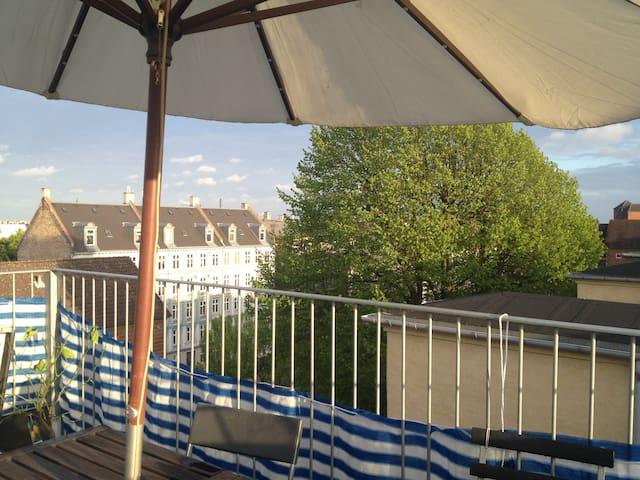 The Roof terrace can seat 12 for dinner