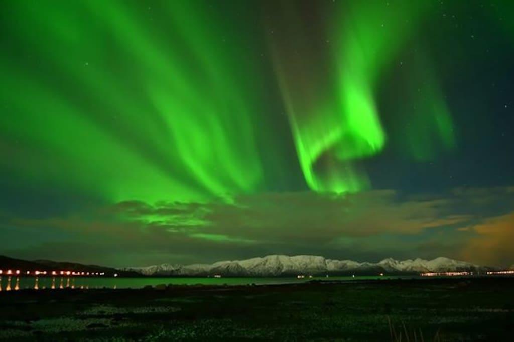 Nordlys Northern Lights