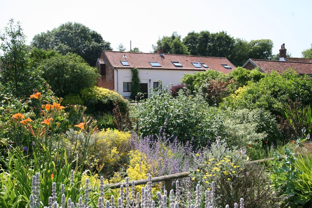 Views of the cottages from across the farm pond