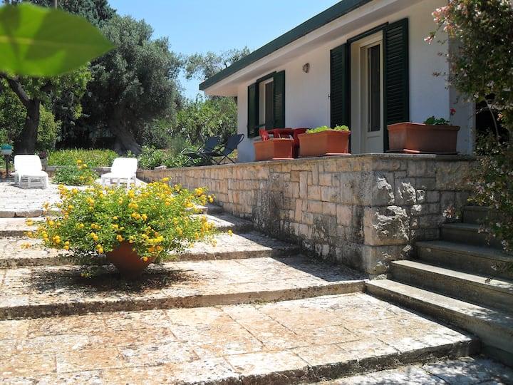 i Gù - books & rooms 3484013290