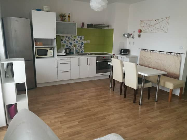 Expats Apartment Most Pri Bratislava - short term