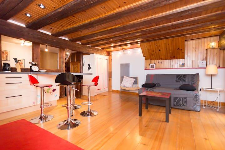 Bel appartement centre Riquewihr