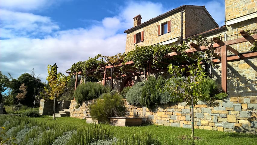 Istrian stone house Padna, 4 person - Padna